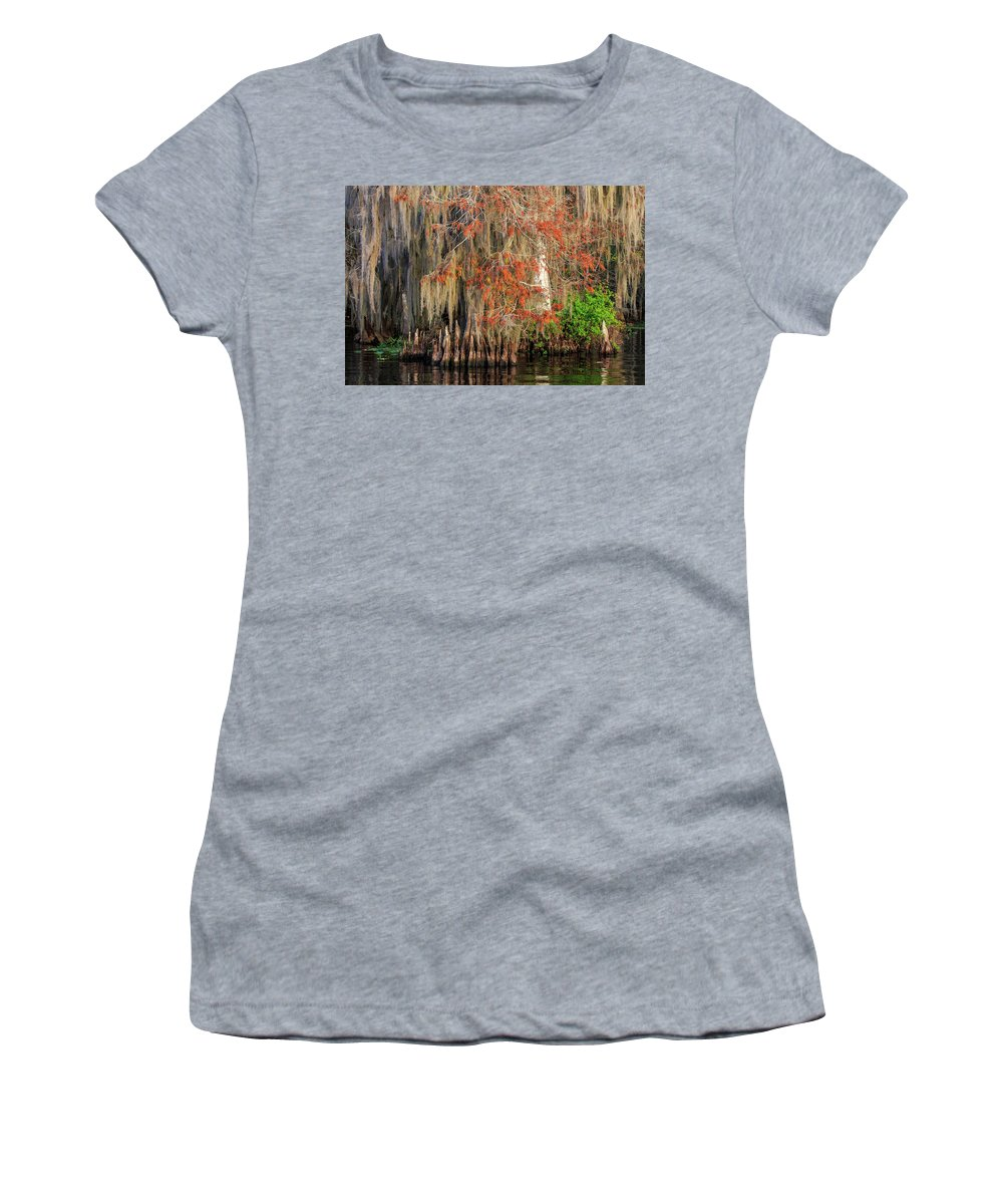 Blue Cypress Lake Women's T-Shirt (Athletic Fit) featuring the photograph Cypress Winter Colors by Stefan Mazzola