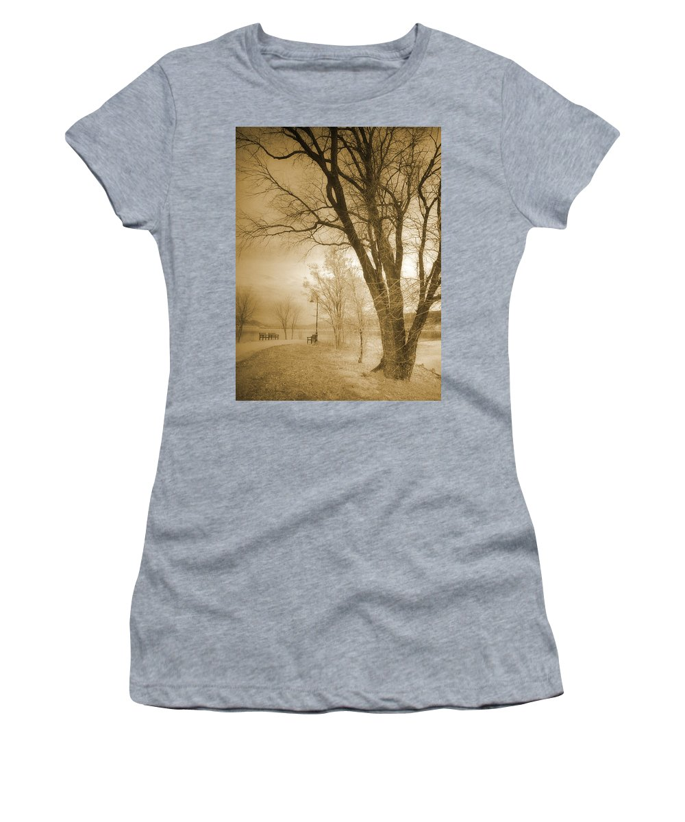 Trees Women's T-Shirt (Athletic Fit) featuring the photograph December Glow by Tara Turner