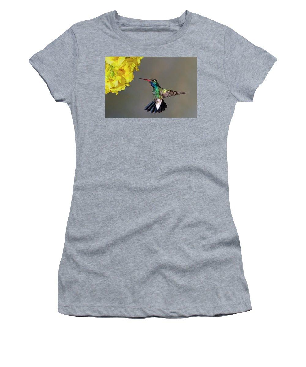 Hummingbird Women's T-Shirt featuring the photograph Delicate by Janet Fikar