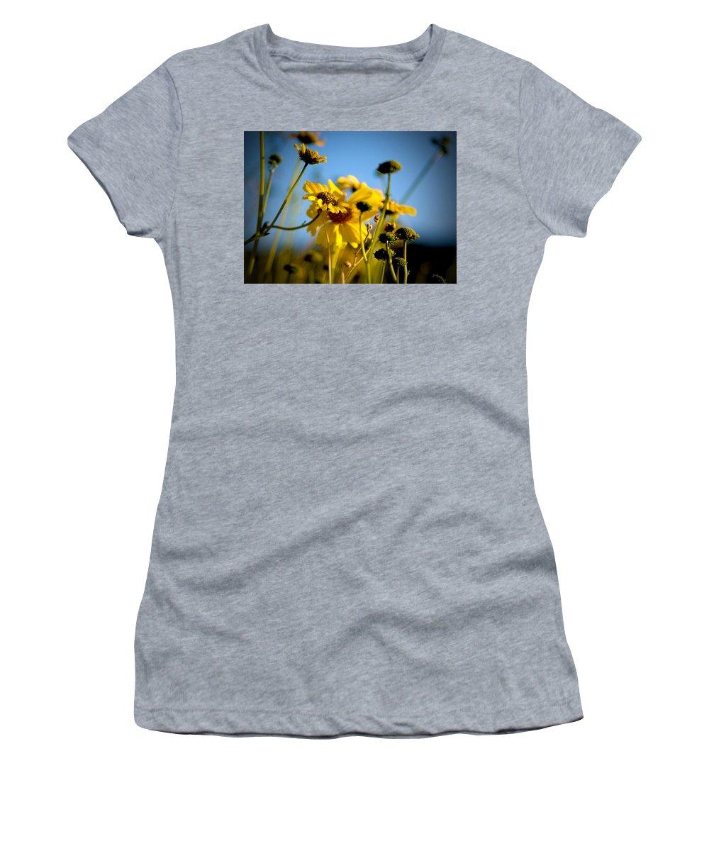 Desert Sunflower Women's T-Shirt (Athletic Fit) featuring the photograph Desert Sunflower Variations by Chris Brannen