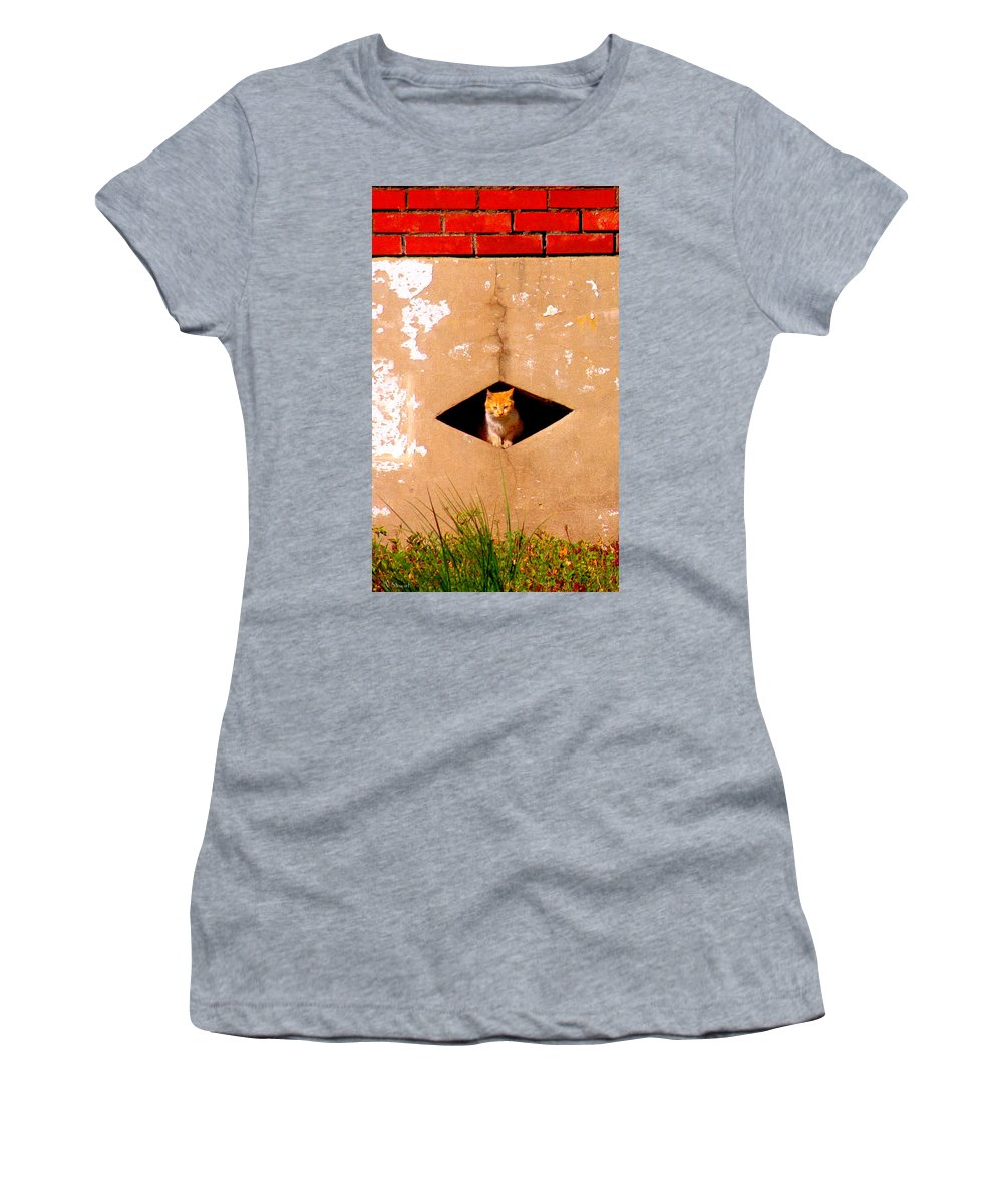 Cat Women's T-Shirt (Athletic Fit) featuring the photograph Diamond Kitty by Albert Stewart