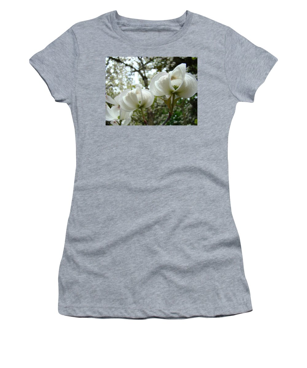 Dogwood Women's T-Shirt featuring the photograph Dogwood Flowers White Dogwood Trees Blossoming 8 Art Prints Baslee Troutman by Baslee Troutman