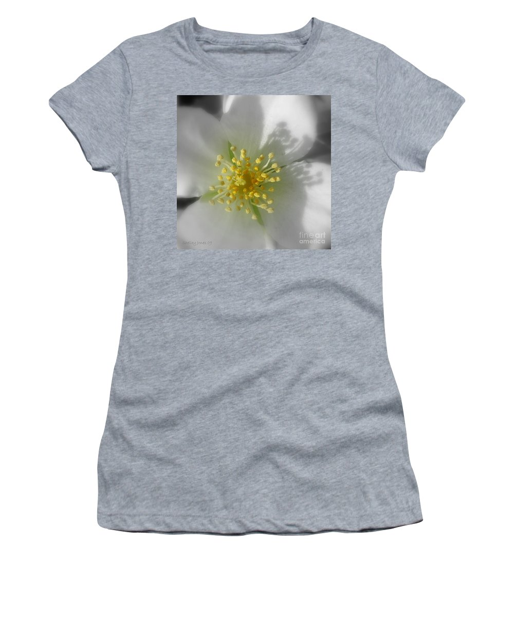 Photography Women's T-Shirt (Athletic Fit) featuring the photograph Dogwood by Shelley Jones