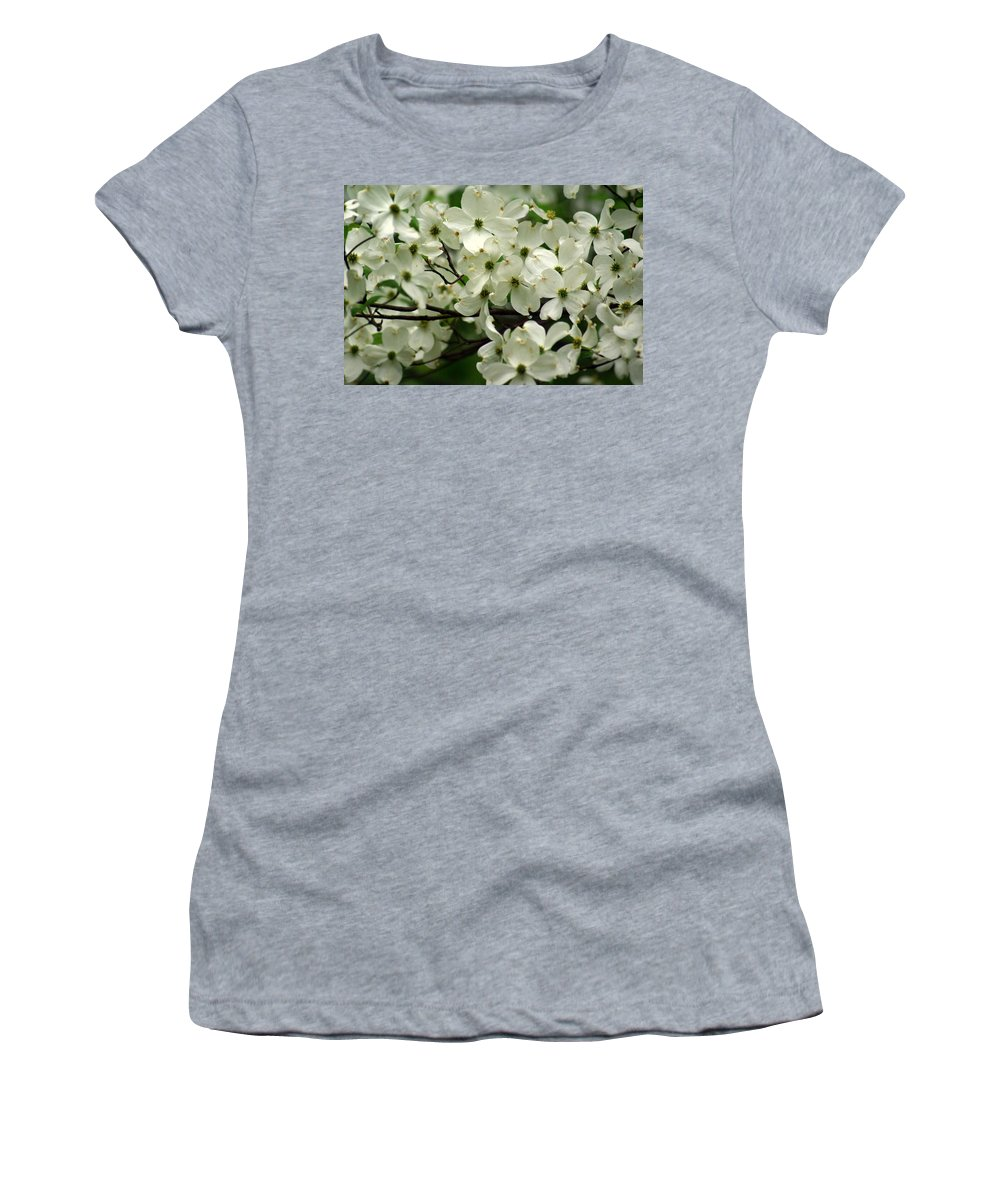 Dogwood Women's T-Shirt featuring the photograph Dogwoods by Marty Koch