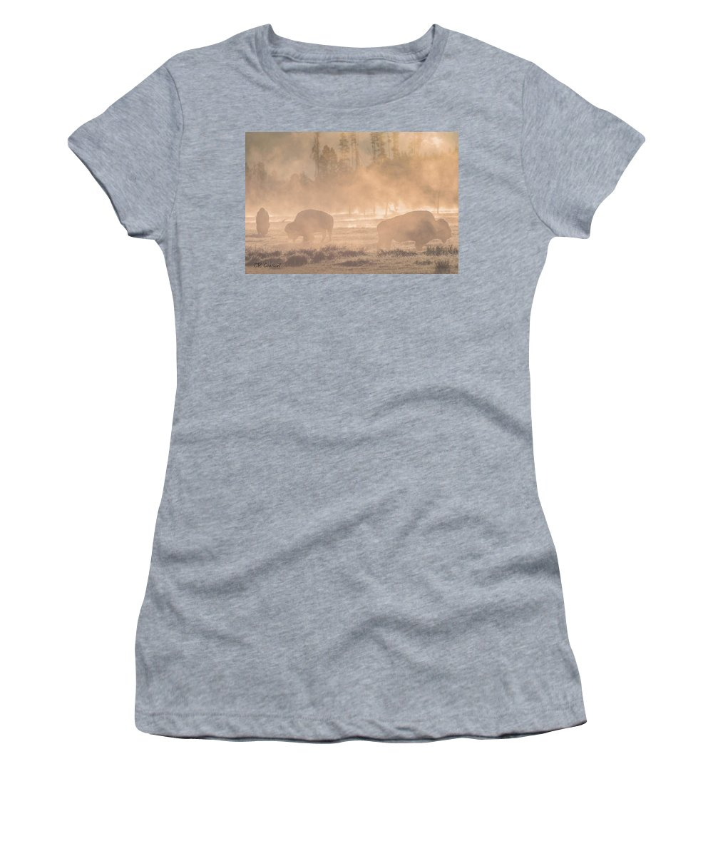 Bison Women's T-Shirt featuring the photograph Early Morning Grazing In The Mist by CR Courson