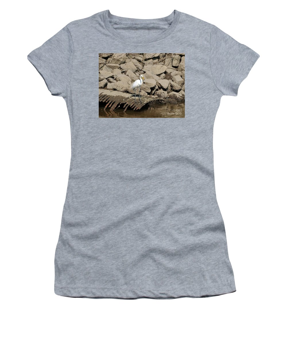 Great Egret Women's T-Shirt featuring the photograph Egret Fishing by Al Powell Photography USA