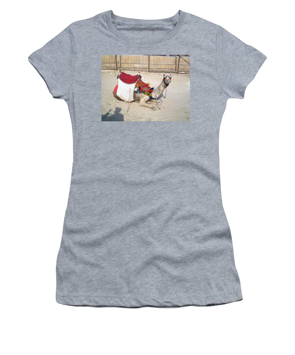 Egypt Women's T-Shirt featuring the photograph Egypt - Camel by Munir Alawi