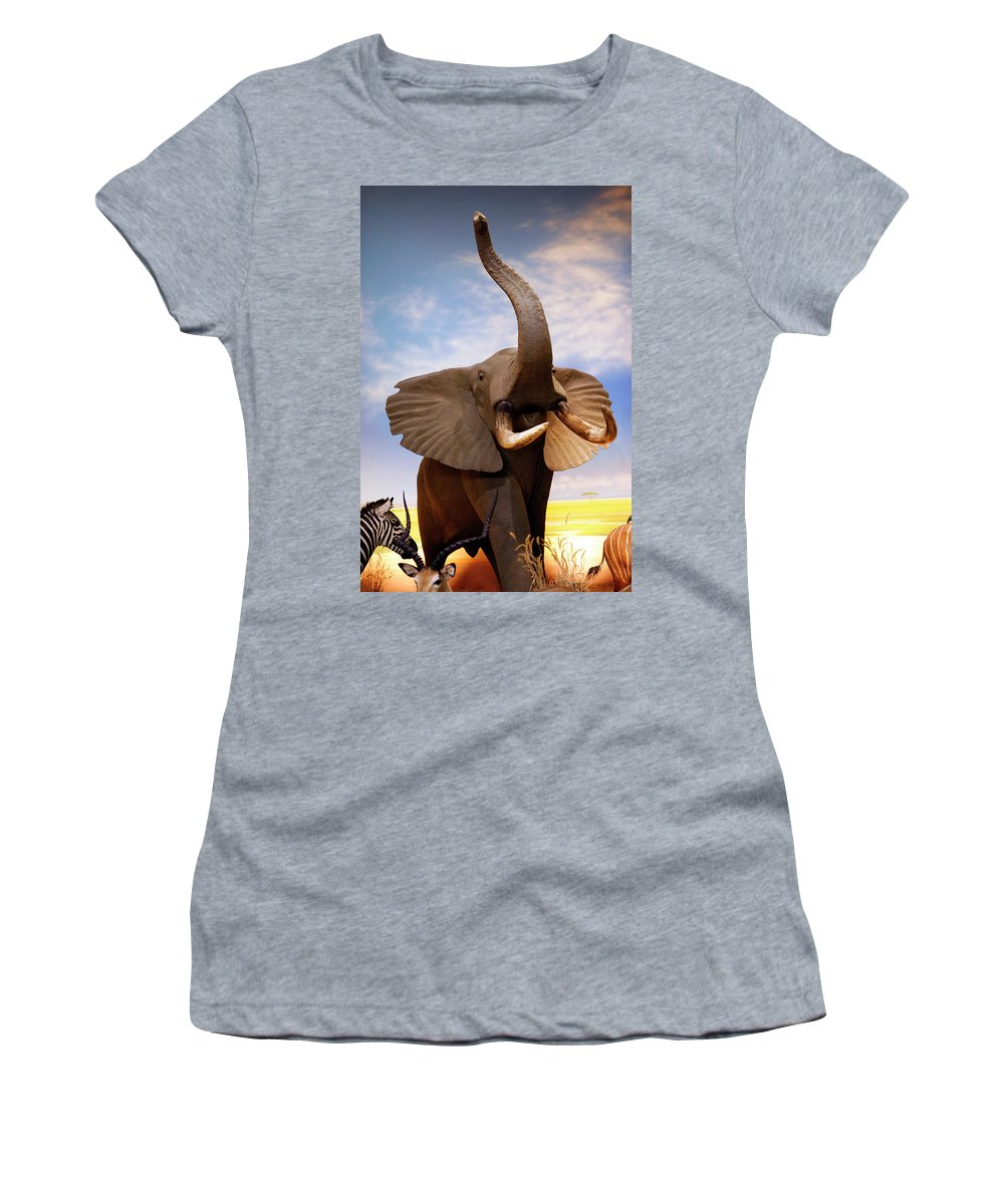 Nature Women's T-Shirt (Athletic Fit) featuring the photograph Elephant by Marilyn Hunt