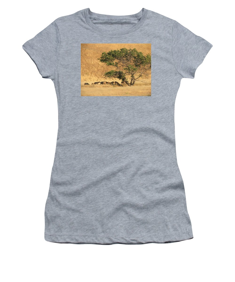 Landscapes Women's T-Shirt (Athletic Fit) featuring the photograph Elk Under Tree by Karen W Meyer