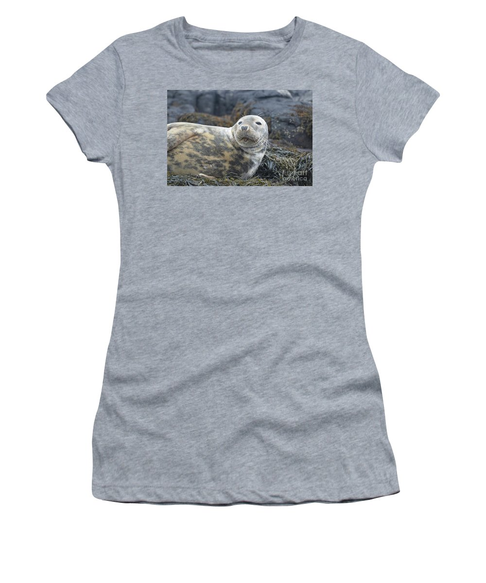 Seal Women's T-Shirt (Athletic Fit) featuring the photograph Face Of A Gray Seal by DejaVu Designs