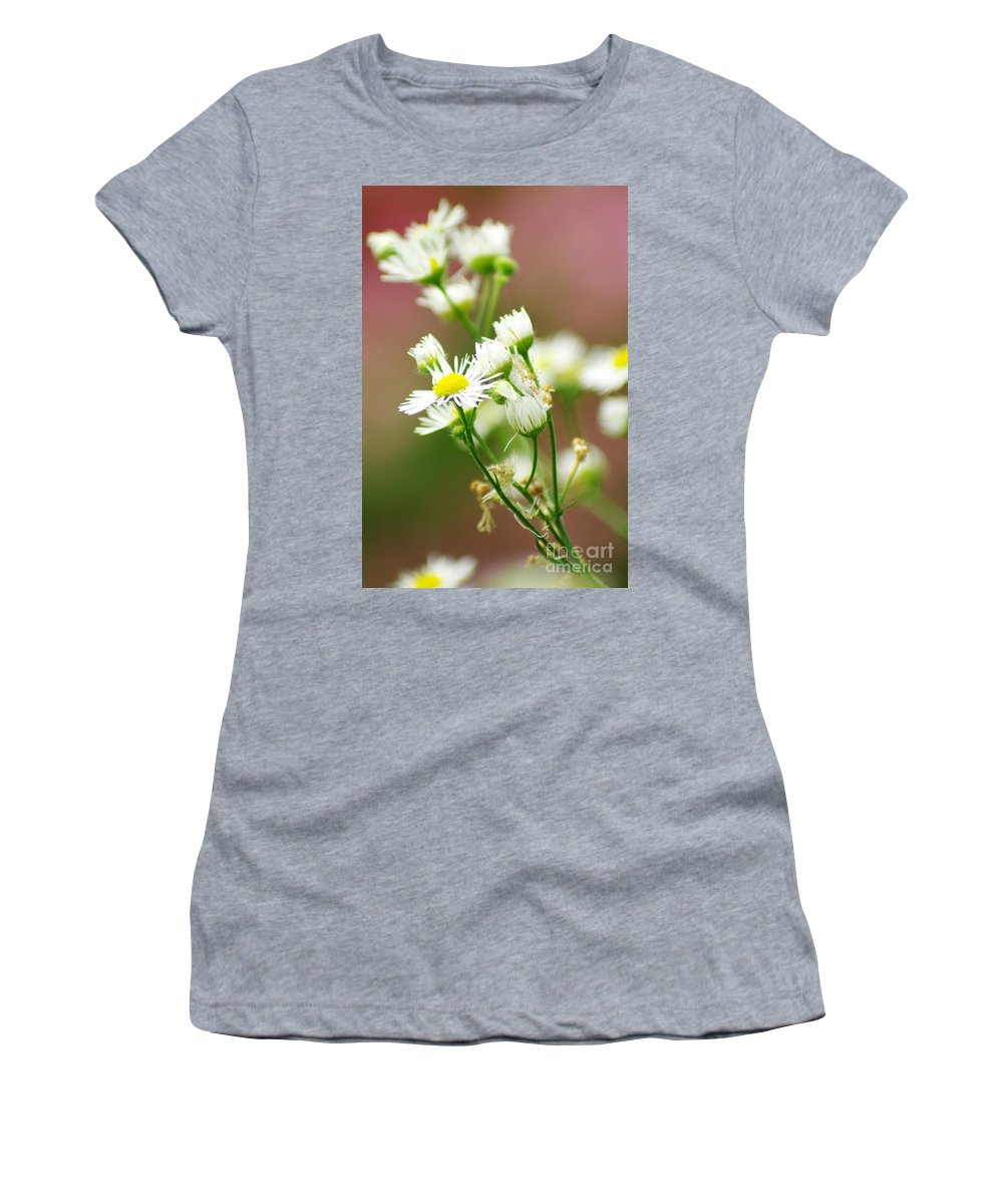 Women's T-Shirt featuring the photograph Fall Flowers by Kitrina Arbuckle