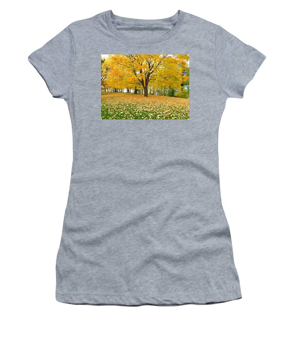 Kaloya Park Women's T-Shirt (Athletic Fit) featuring the photograph Fall In Kaloya Park 7 by Will Borden