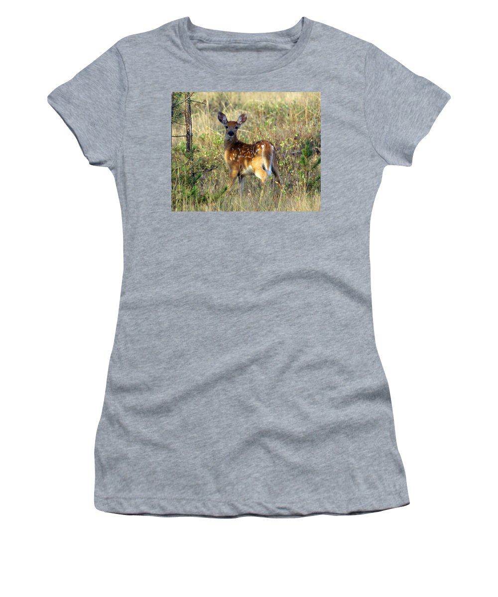 Deer Women's T-Shirt (Athletic Fit) featuring the photograph Fawn by Marty Koch