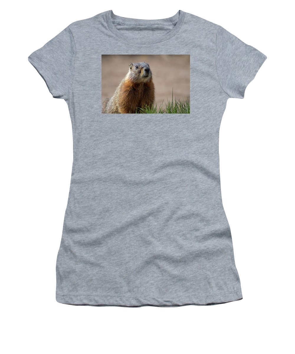 Wyoming Women's T-Shirt featuring the photograph Fearless by Frank Madia