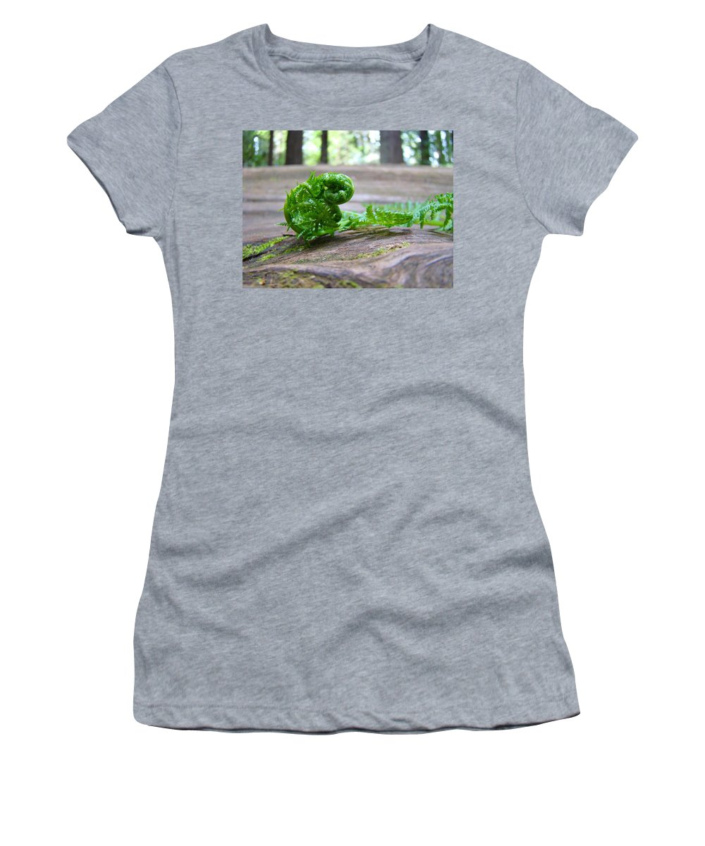 Fern Women's T-Shirt featuring the photograph Fern On Big Redwood Tree Art Prints Baslee Troutman by Baslee Troutman