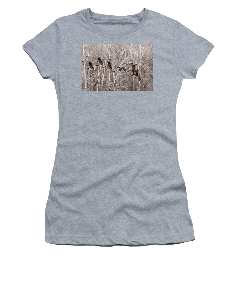 Two Geese Women's T-Shirt featuring the photograph Flock Of Geese by Paul Freidlund