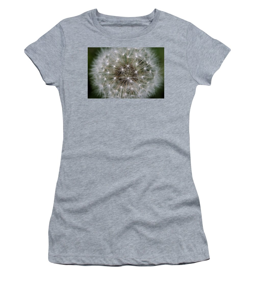 Dandelion Women's T-Shirt (Athletic Fit) featuring the photograph Fuzzy by Angela Rath