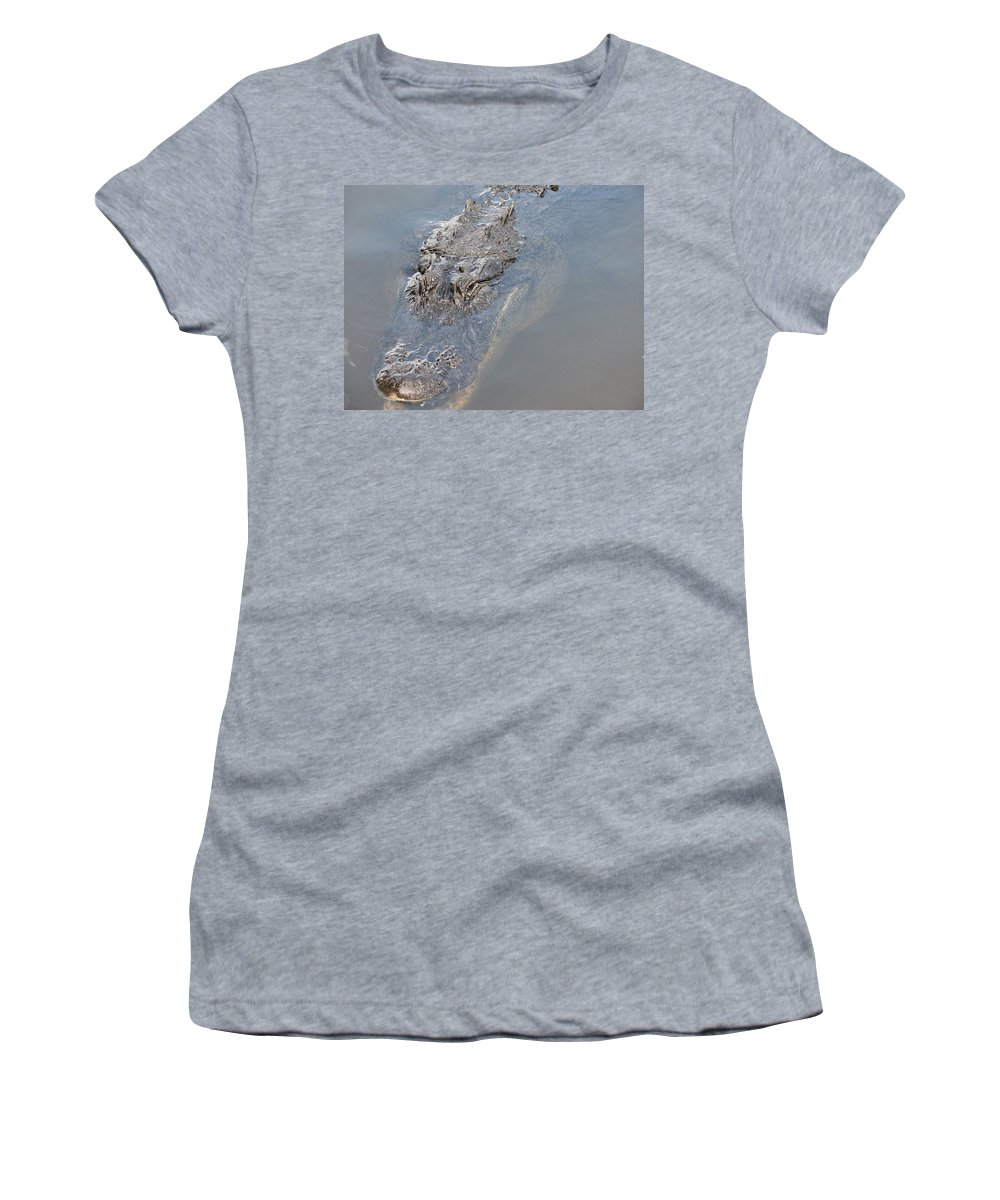 Alligator Women's T-Shirt featuring the photograph Gator IIi by Stacey May