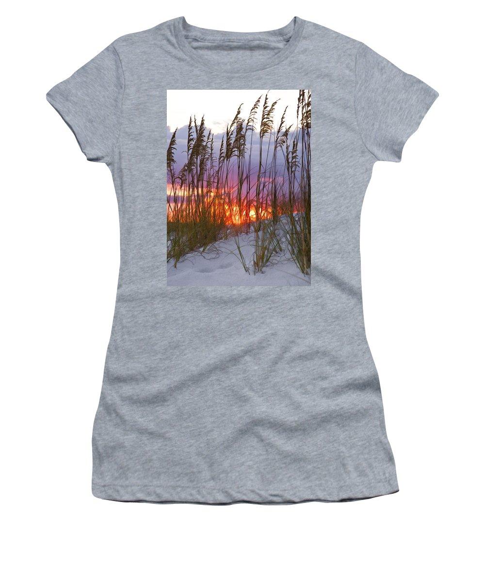 Sea Oats Women's T-Shirt featuring the photograph Golden Amber by Janet Fikar