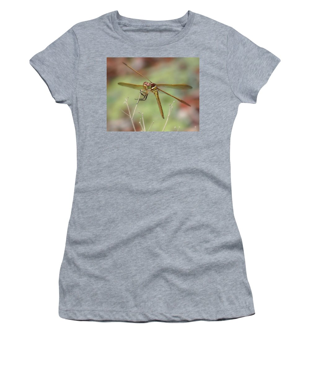 Nature Women's T-Shirt featuring the photograph Golden-winged Skimmer by Peg Urban