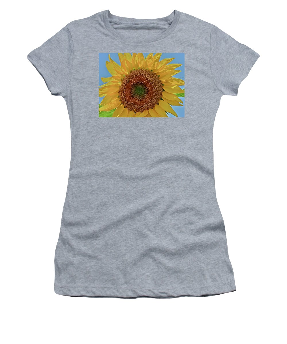 Flower Women's T-Shirt (Athletic Fit) featuring the photograph Good Morning by Diana Hatcher