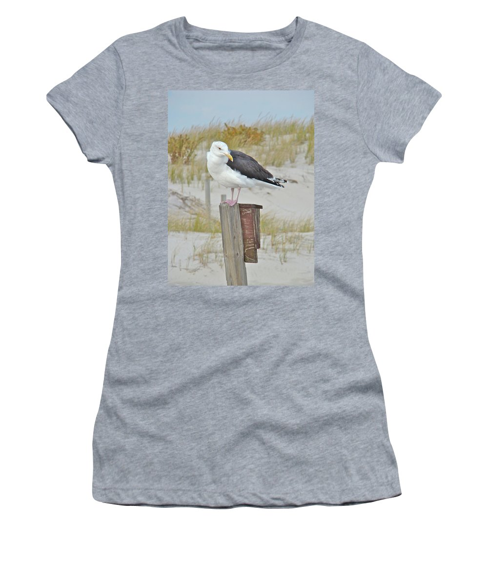 Seagull Women's T-Shirt (Athletic Fit) featuring the photograph Great Black Backed Gull - Larus Marinus by Mother Nature