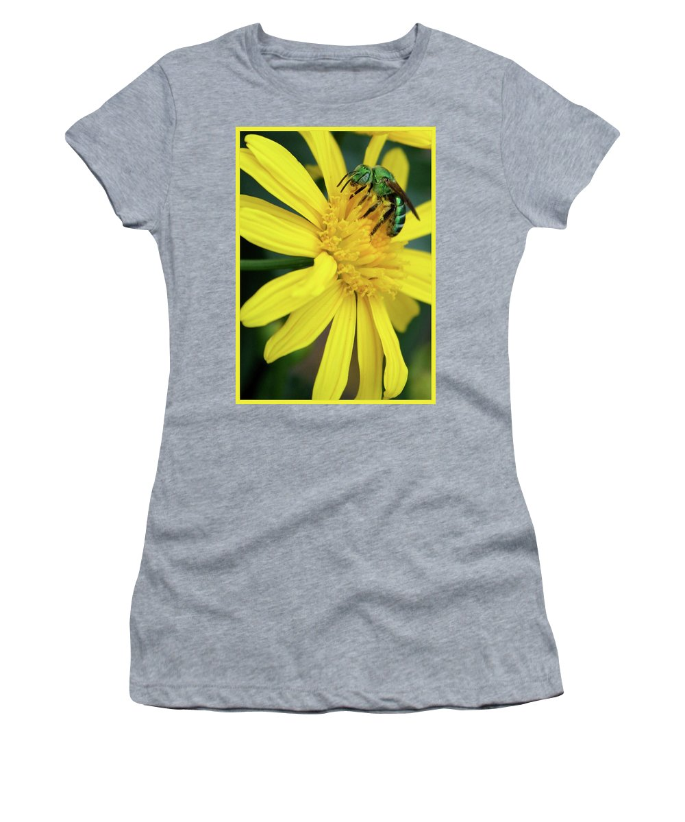Bright And Shiny Women's T-Shirt featuring the photograph Green Bee On Yellow Daisy by Carol Groenen