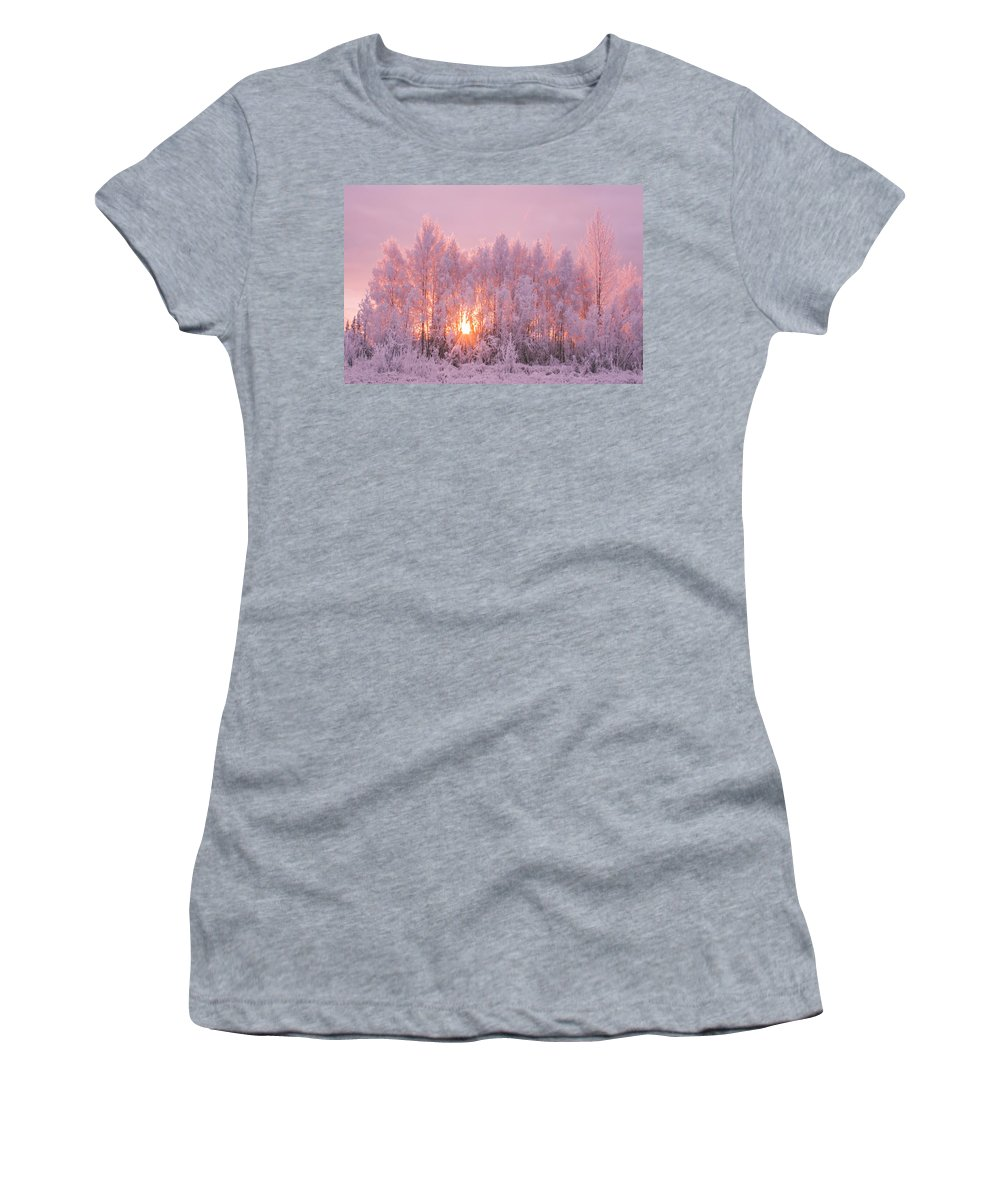 Frosted Trees Women's T-Shirt (Athletic Fit) featuring the photograph Happy Trees by James Rhodes