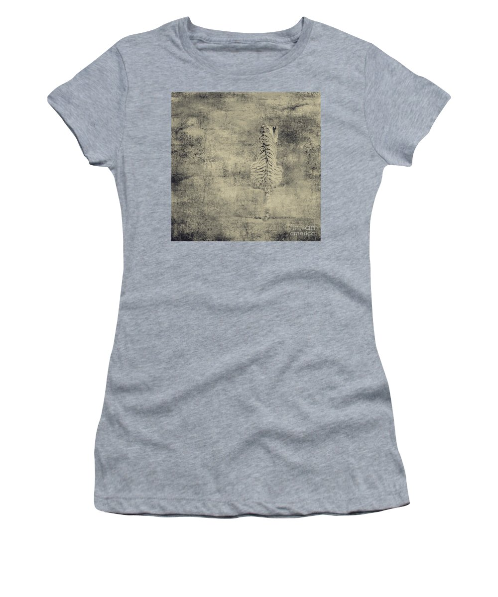 Dipasquale Women's T-Shirt (Athletic Fit) featuring the photograph Have You Comprehended... by Dana DiPasquale