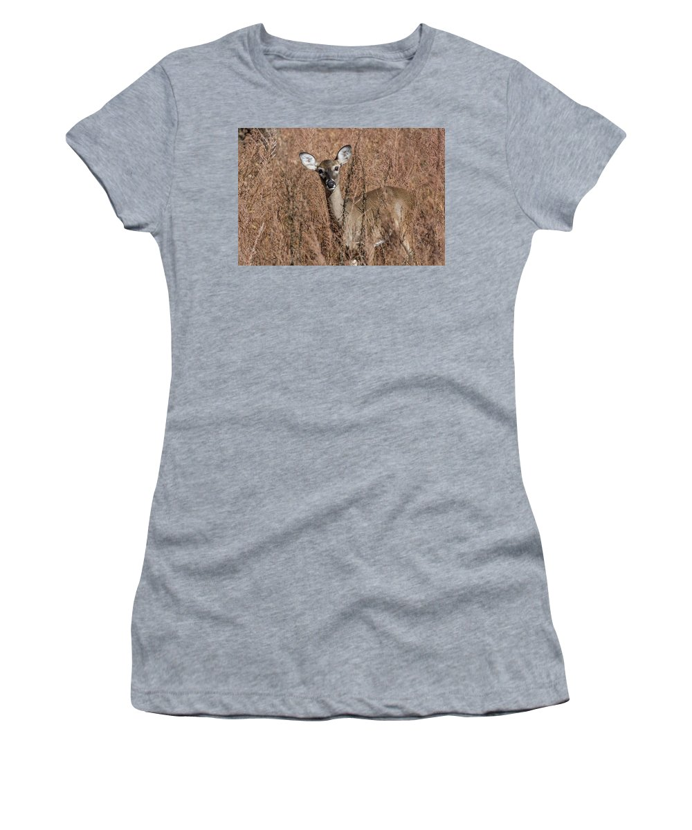 Wildlife Women's T-Shirt (Athletic Fit) featuring the photograph Hello by John Benedict