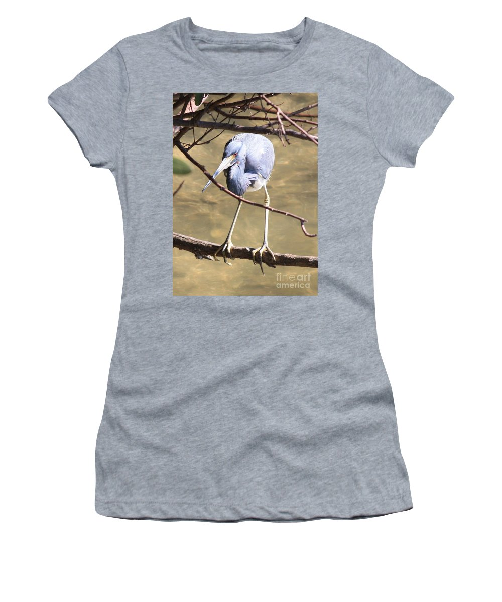Tricolored Heron Women's T-Shirt featuring the photograph Heron On Branch by Carol Groenen