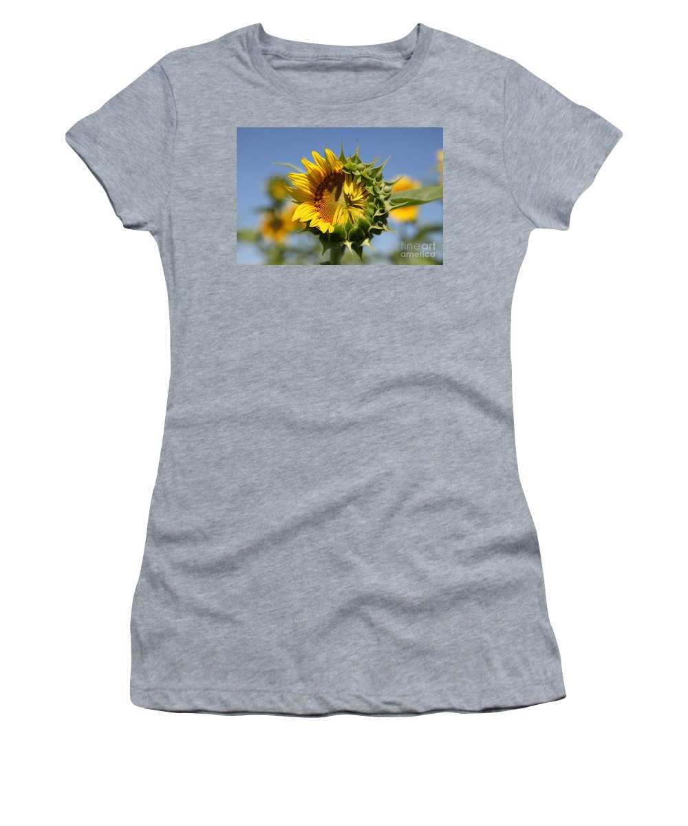 Sunflowers Women's T-Shirt (Athletic Fit) featuring the photograph Hesitant by Amanda Barcon