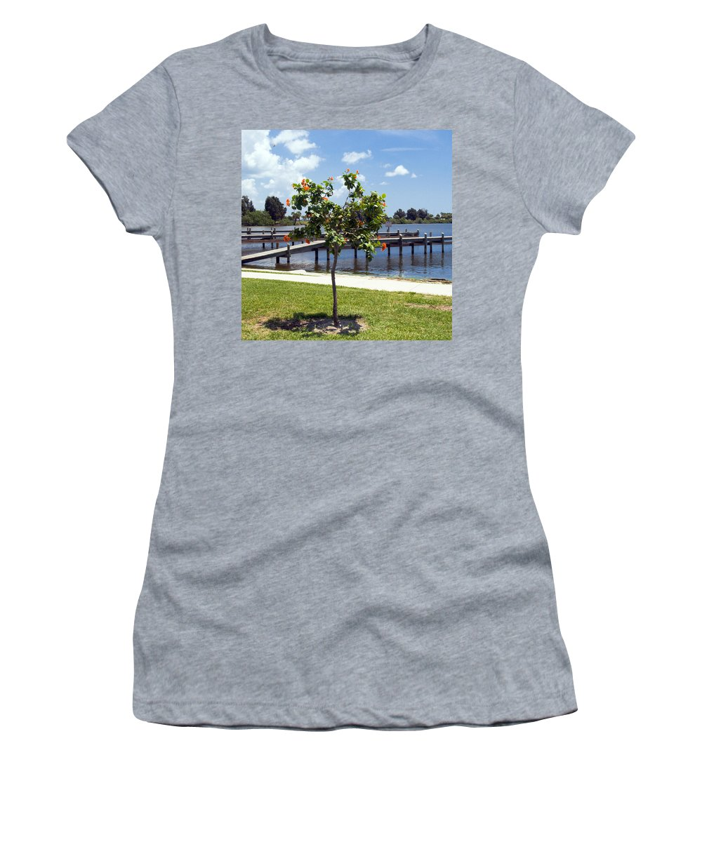Hibiscus; Rosasinensis; Rosa; Sinensis; Rosa-sinensis; Tree; Bush; Shrub; Plant; Flower; Flowers; Fl Women's T-Shirt featuring the photograph Hibiscus Rosasinensis With Fruit On The Indian River In Florida by Allan Hughes