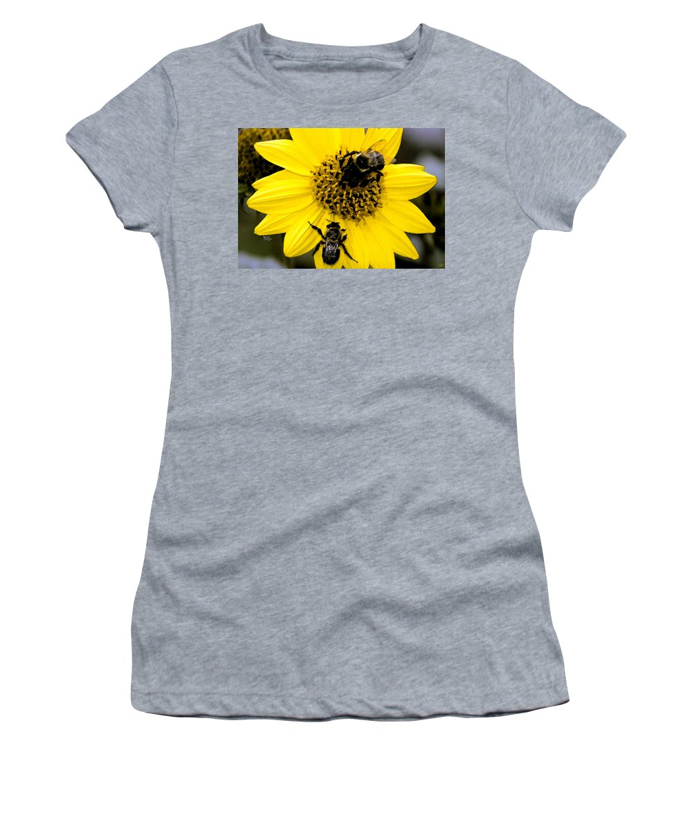 Honey Bees Women's T-Shirt (Athletic Fit) featuring the painting Honey Bees by David Lee Thompson