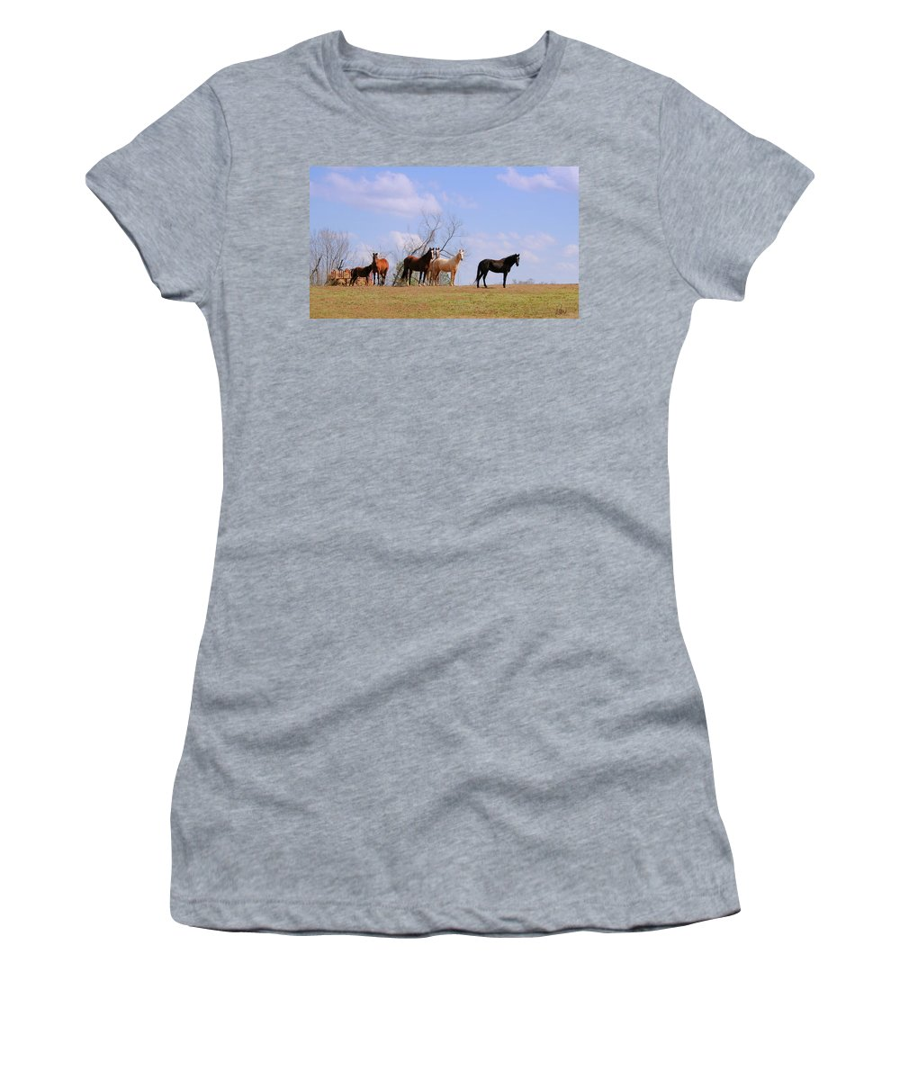 Horses Women's T-Shirt (Athletic Fit) featuring the photograph Horses On The Hill by Bonnie Willis