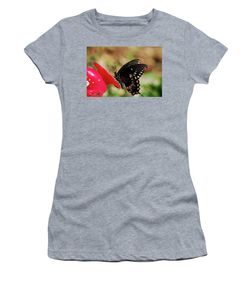Butterfly Women's T-Shirt featuring the photograph Hummingbird Imposter by Lori Tambakis