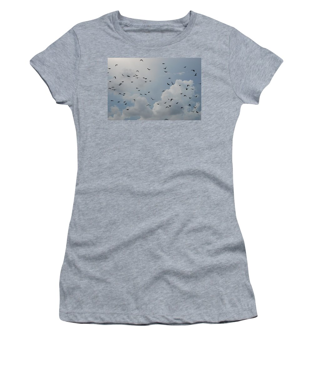 Birds Women's T-Shirt featuring the photograph In Flight by Rob Hans