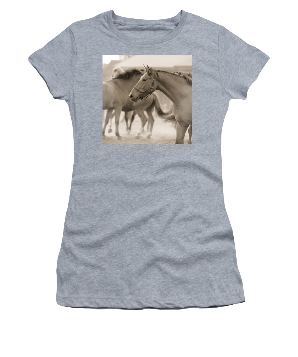 Horses Women's T-Shirt (Athletic Fit) featuring the photograph In The Dust by Angel Ciesniarska