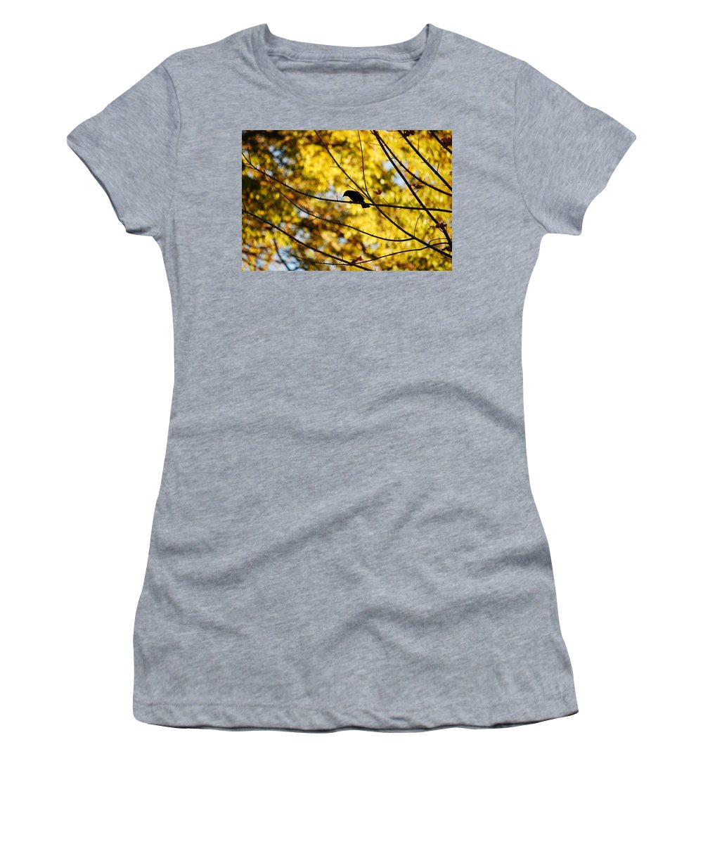 Bird Women's T-Shirt (Athletic Fit) featuring the photograph It's A Bird by Lori Tambakis