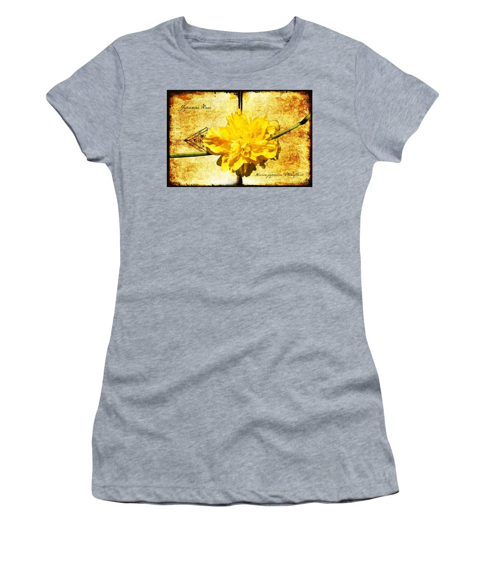 Kerria Women's T-Shirt featuring the digital art Japanese Rose by Teresa Mucha