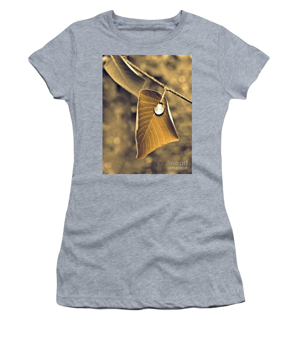 Leaf Women's T-Shirt (Athletic Fit) featuring the photograph June 18 2010 by Tara Turner