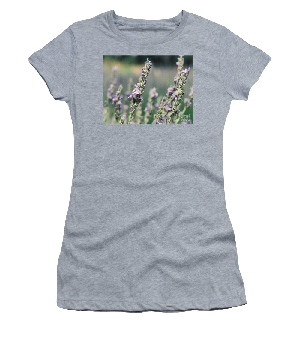 Flowers Women's T-Shirt (Athletic Fit) featuring the painting Lavender by Eric Schiabor