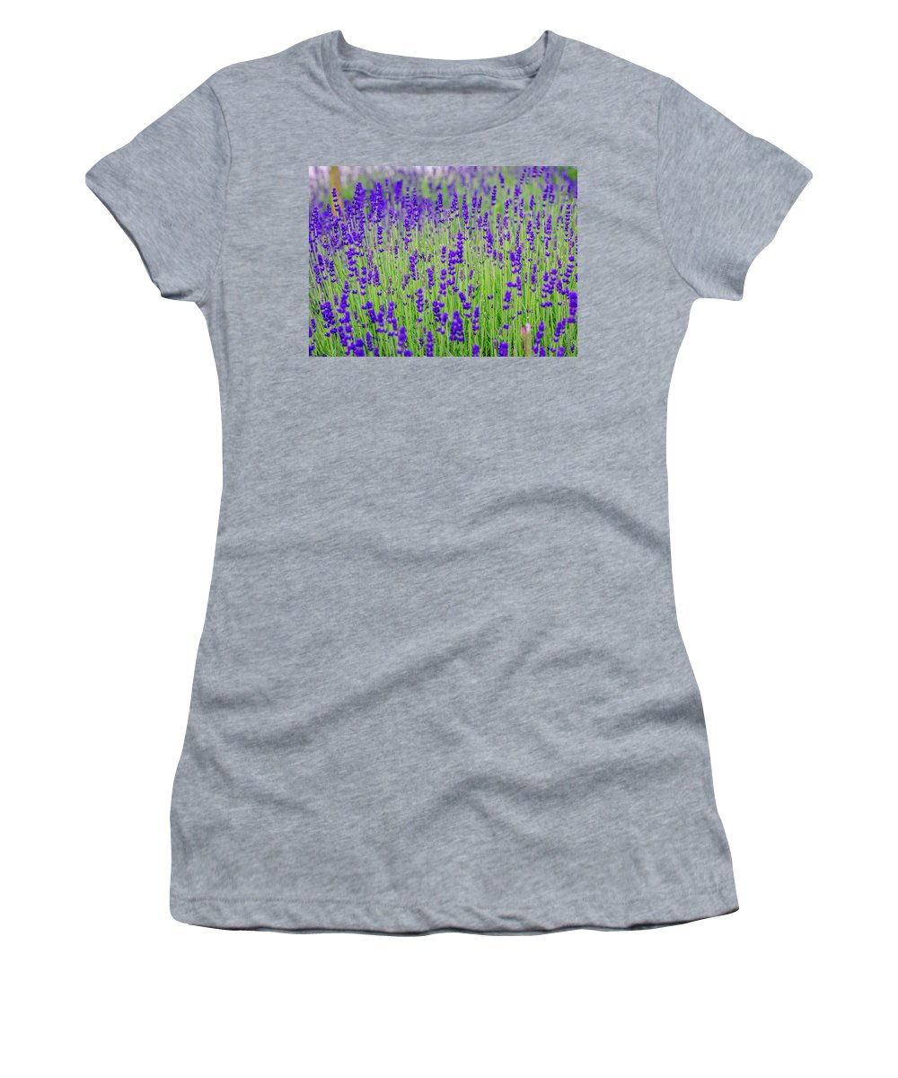 Lavender Women's T-Shirt (Athletic Fit) featuring the photograph Lavender by Rainer Kersten