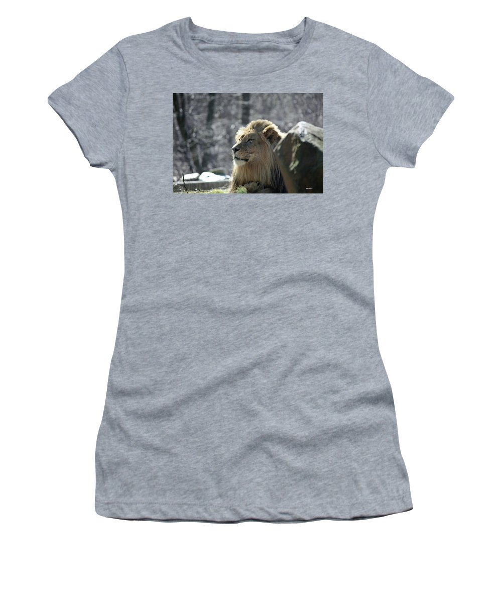 Maryland Women's T-Shirt featuring the photograph Lion King by Ronald Reid