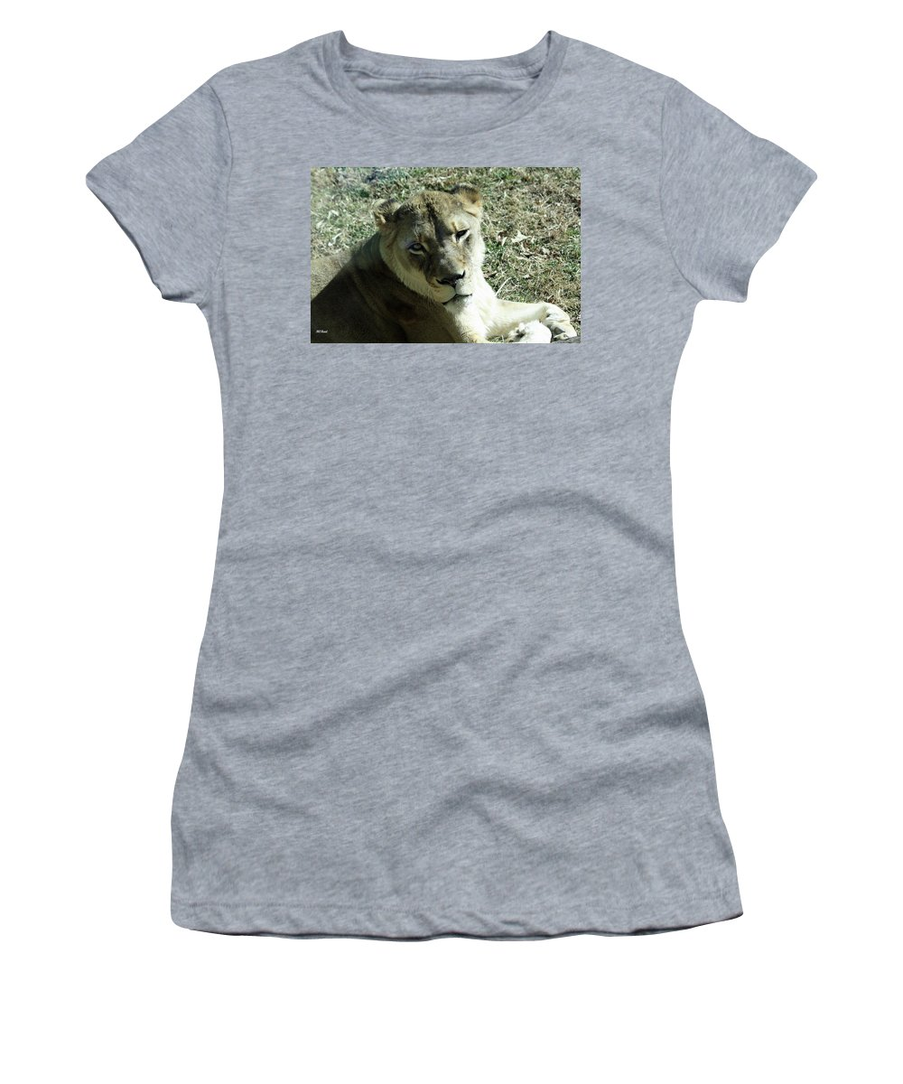 Maryland Women's T-Shirt featuring the photograph Lioness Peering by Ronald Reid