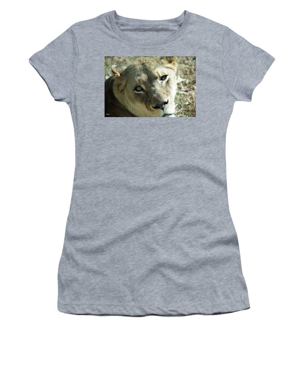 Maryland Women's T-Shirt featuring the photograph Lioness Up Close by Ronald Reid