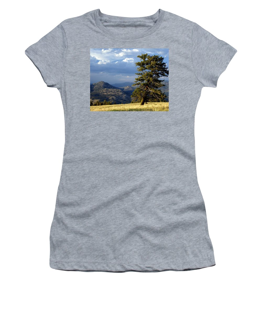 Yellowstone National Park Women's T-Shirt (Athletic Fit) featuring the photograph Lonly Tree by Marty Koch