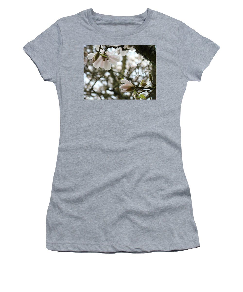 Magnolia Women's T-Shirt featuring the photograph Magnolia Tree Flowers Pink White Magnolia Flowers Spring Artwork by Baslee Troutman