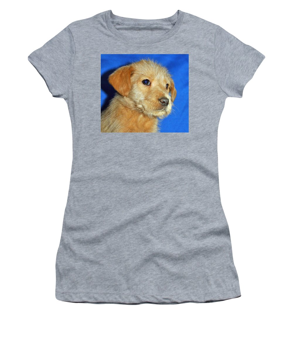 Dog Women's T-Shirt (Athletic Fit) featuring the photograph Michael Portrait by Eric Liller