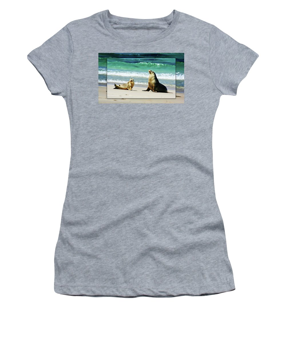 Sea Lions Women's T-Shirt featuring the photograph Mother And Child by Douglas Barnard